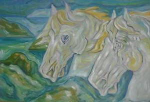 cavalli-collezione privata