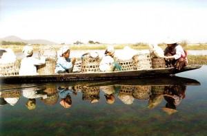 Birmania Lago Inle, 2006, f. Minnella