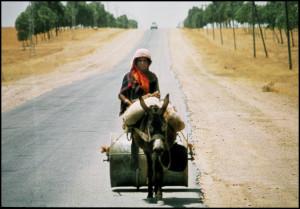Tunisia (foto Giaramidaro)