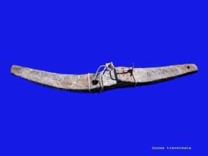 Ancora mobile  in piombo rinvenuta nelle acque di Favignana