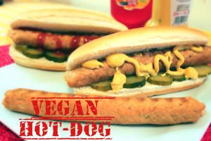 Vegan hot-dog, Nanda's, Lucca