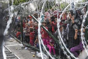 Ai confini dell'Ungheria