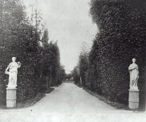 Il viale d'accesso al Parco dell'Olivuzza