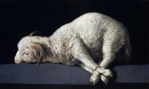 Francisco de Zurbarán - Carnero con las patas atadas - 1632 (coll. privata)