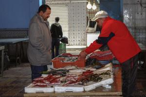 Tunisia_2010