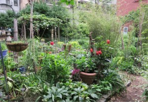 el-sol-brillante-un-giardino-comunitario-nelleast-village