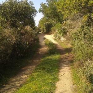 in-cammino-verso-la-fonte-sa-tuitta
