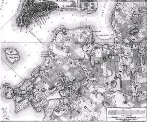 1-il-territorio-di-brooklyn-in-una-mappa-del-1766