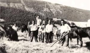 Altopiano di Rascino (Rieti). La trita del grano (anni '50 - foto Pro Loco di Fiamignano)