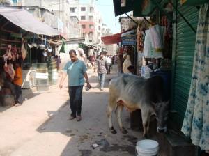 Old Dhaka (ph. Della Puppa)