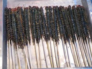 Centipedes, street food