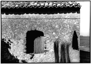 http://www.istitutoeuroarabo.it/DM/wp-content/uploads/2018/02/1.-Calabria-1981ph.-Salvatore-Piermarini.jpeg