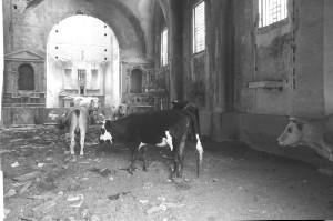 http://www.istitutoeuroarabo.it/DM/wp-content/uploads/2018/02/2.-Chiesa-Africo-Vecchio-1999-ph.-Teti.jpg
