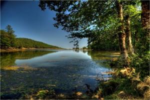 Lago-Biviere