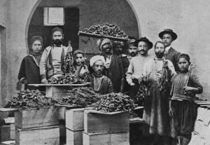 Fratelli-Bergami-commercio-dei-datteri-Sfax-1906