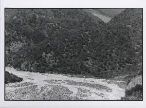 Bonamico, 2003 (ph. V. Teti).