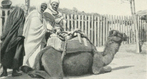 Kairuan-un-fùnduk-da-Beltramelli