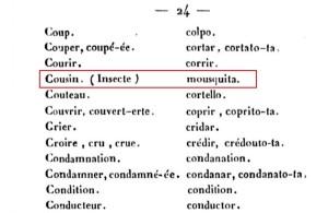 3-cousin-insecte