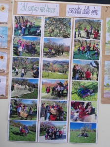 Attività-didattiche-nella-scuola-di-Camporotondo