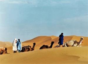 Sahara-Algerino-Grande-Erg-Occidentale