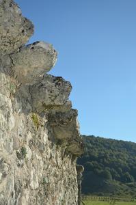 -Particolare-delle-pietre-'antilupo'-Foto-B.-Adriani.