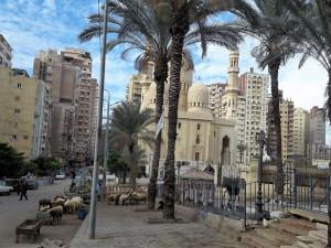 presso-moschea-abu-abbas-al-mursi_1