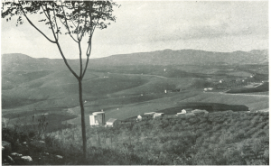 3-edoardo-caracciolo-borgo-gattuso-1941