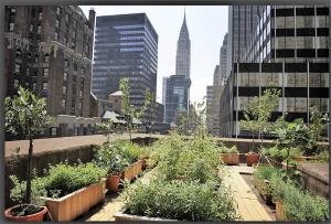copertina-giardini-newyorkesi