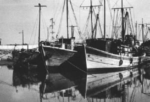 barconi-tunisia-2