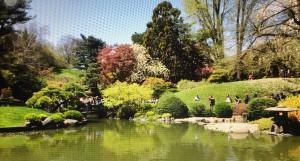 bronx-ny-botanic-garden-foto-f-schiavo