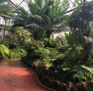 chicago-botanic-garden-foto-di-f-schiavo