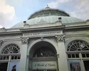 the-conservatory-bronx-il-giardino-botanico-foto-di-f-schiavo