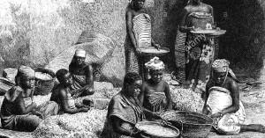 la-schiavitu-femminile-del-lavoro-degli-schiavi-africani-orseille-pulizia-incisione-su-legno-del-xix-secolo-alle-persone-le-donne-africane-africani-neri-africani-db3w98