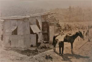 3-baracca-privata-con-uso-di-stalla