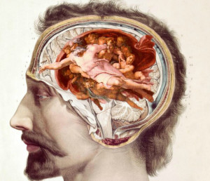 Historical picture of a human brain into the head. --Only Italy-- LaPresse --