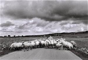 monte-lauro-iblei-foto-np-2