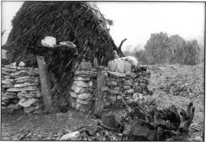 supramonte-di-orgosolo-sardinia-1978
