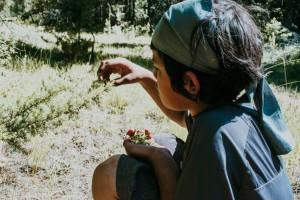 1-la-vita-come-educazione-conosceza-indigena