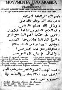 5_michele-amari-le-epigrafi-arabiche-di-sicilia