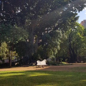 2-g_sabato-palermo-villa-trabia