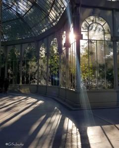 g_sabato-madrid-palacio-de-cristal