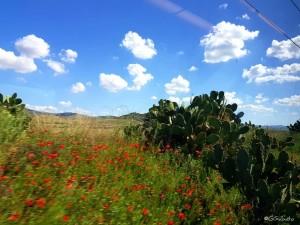 g_sabato-treno-paesaggio-siciliano