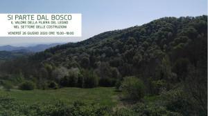 si-parte-dal-bosco_3