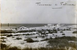 tonnare10