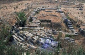 il-misterioso-tempio-m-difficile-da-vedere-perche-assediato-dalla-vegetazione