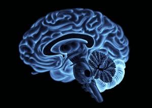 parlare-di-se-per-soddisfare-il-cervello