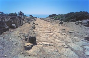 la-strada-sullacropoli-che-conduce-alla-via-sacra