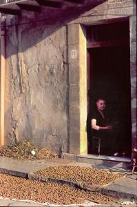 anziana-con-mandorle-da-asciugare-al-sole-cattolica-eraclea-1980