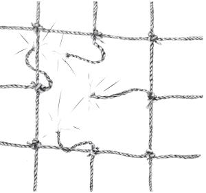figura-2-la-rete