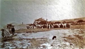 lalbero-della-cuccagna-o-quarantamau-campagne-di-palazzolo-1910-ca